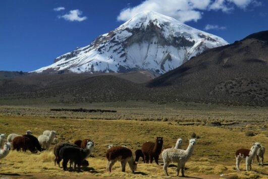 Nevado Sajama, Bolivia