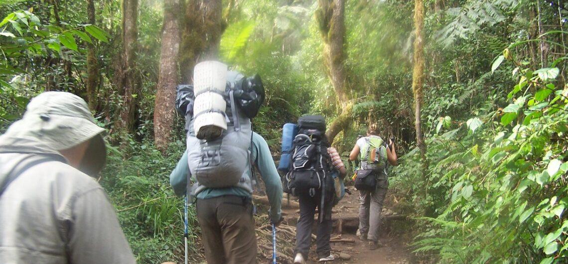 Kilimanjaro en enero