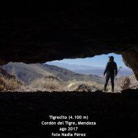 expedicion tigrecito