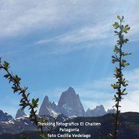 Trekking fotografico El Chalten
